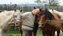 thérapie avec le cheval