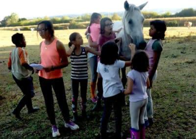 groupe_therapie_avec_le_cheval_enfants_2-c611b