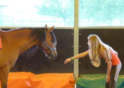 therapie_avec_le_cheval_ados_contact_cheval-167b7