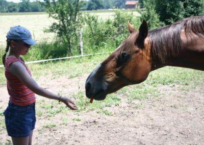therapie_cheval_enfants_2-65894